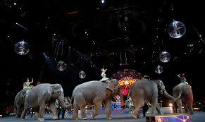 elephantsonparade